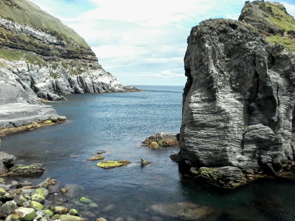 Best Spot Azores PADI 5* Dive Center: Azores Scuba Diving