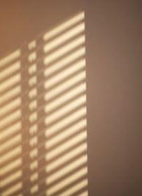 Avatan Sun Blinds Effect
