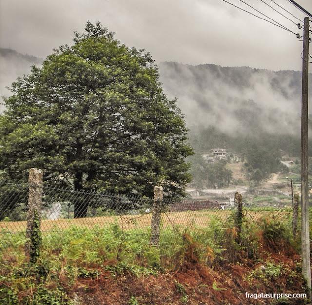 As brumas na paisagem do caminho de Santiago