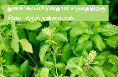 Thulasi benefits in tamil
