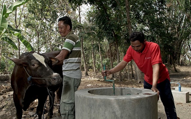 Ibu Endang dan Biogas Limbah Ternak Sapi