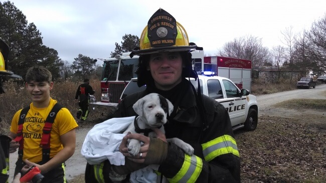 25 Thrilling Images That Made Our Day - A puppy rescued from a fire by local firefighters