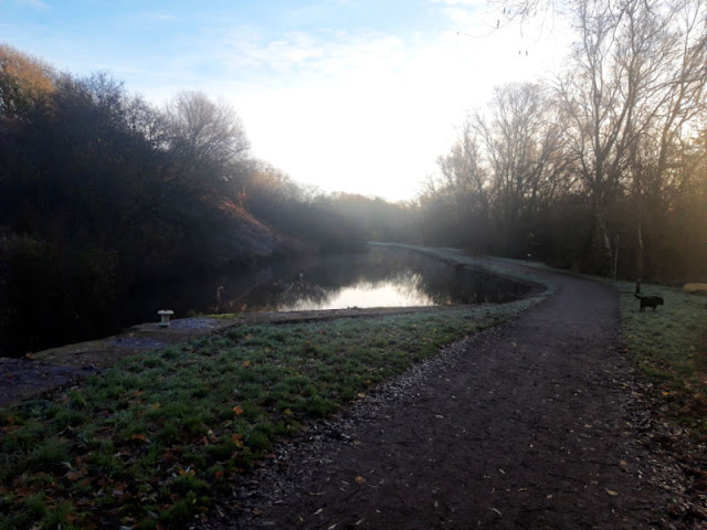 The frosty canal side.  The water is very still, the path is empty and the dog is heading off into the bushes on the right