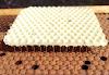 Ο απόλυτος χειρισμός, για ΓΕΡΑ και ΥΓΙΗ μελισσια! Το Test που αποδεικνύει τα πιο καλά μας μελίσσια...