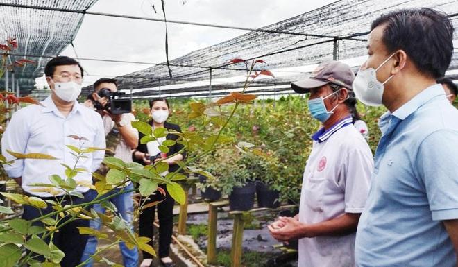 Ông Lê Quốc Phong - Bí thư tỉnh ủy Đồng Tháp (thứ nhất bên trái) vào tận ruộng hoa thăm hỏi bà con nông dân.