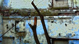 "<img src=""tree stumps"" alt="" derelictmanchester.blogspot.com/p/lodge-mill.html"" />"