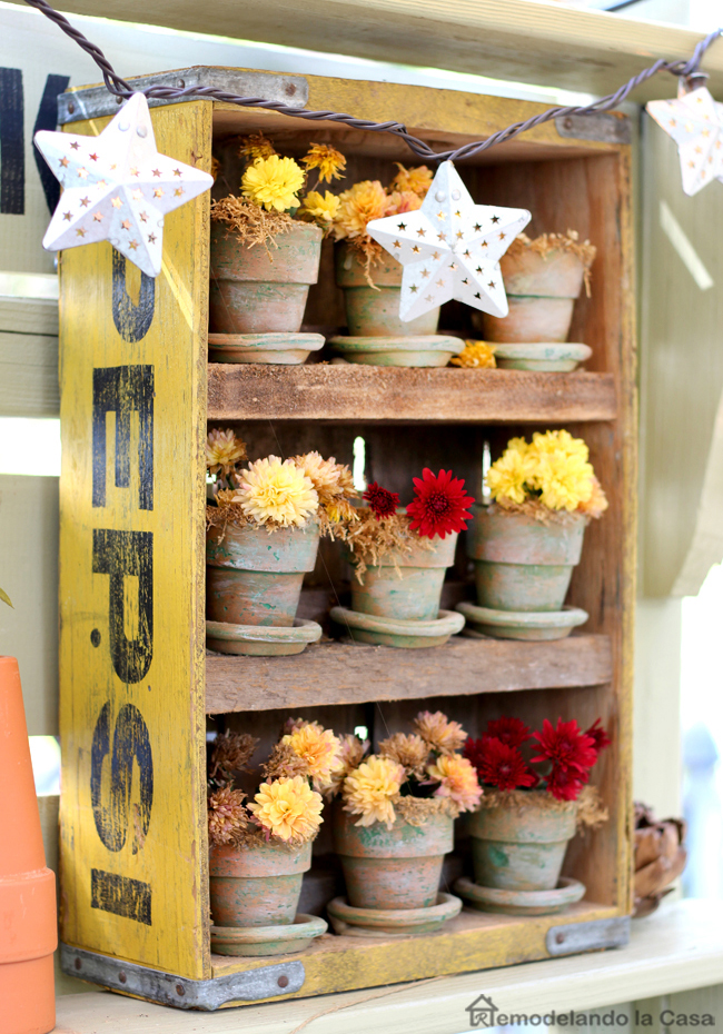 soda crate full of planters