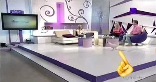 بالفيديو دجاجة تقتحم إستوديو قناة سوريا دراما على الهواء مباشرة!!