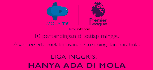 Mola TV Pemegang Hak Siar Liga Inggris 2019-2020