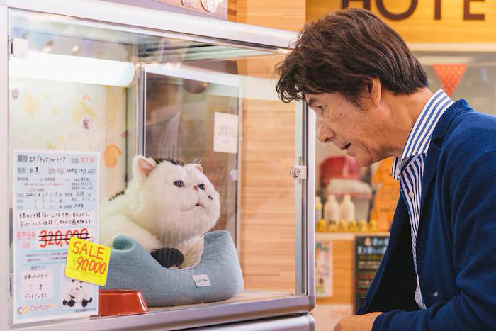 El hombre y el gato (Ojimasa to Neko) live-action dorama