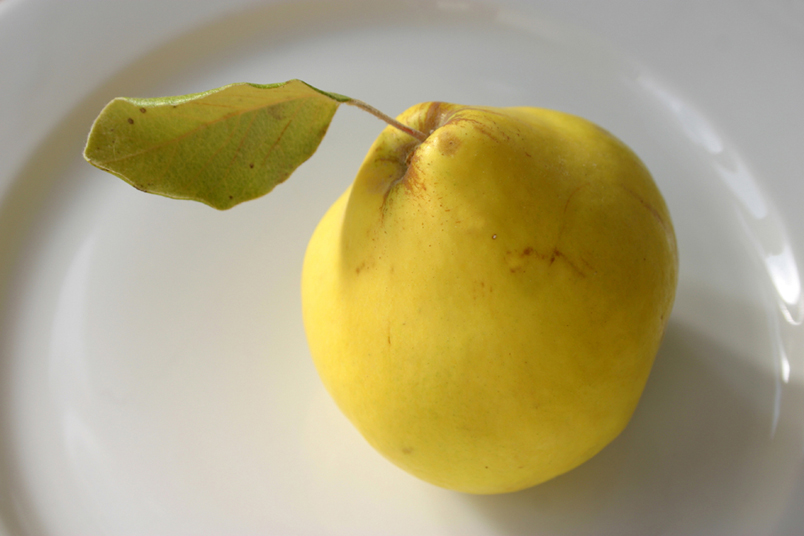 Beautiful fruits in Andalucia, the Quince
