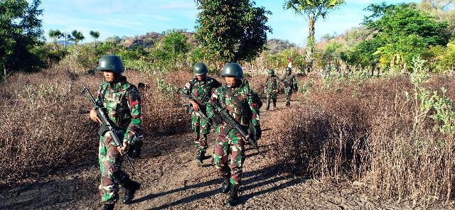 Peran, Fungsi dan Tugas TNI Angkatan Darat