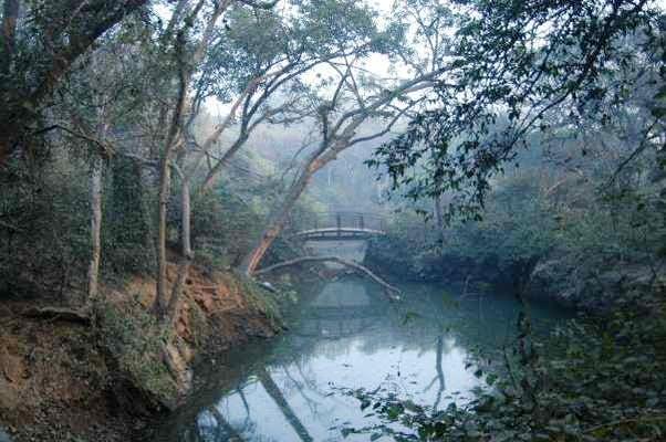 Kamla Nehru Ridge, Delhi