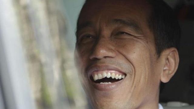 Janji Jokowi Setop Karhutla Hanya Bualan