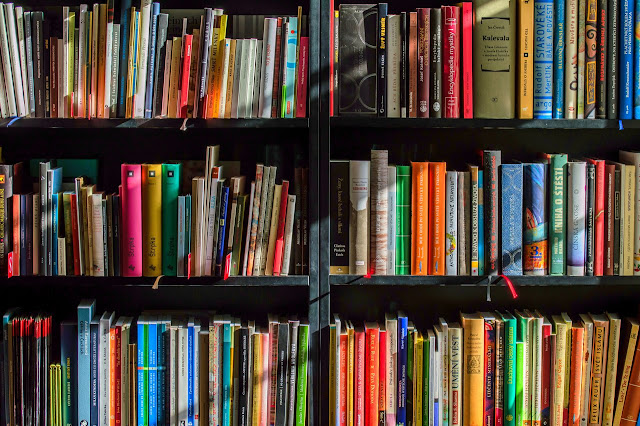 Perpustakaan Daerah Sebagai Pilar Bangsa Sesuai Fungsi dan Tujuannya