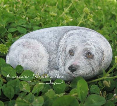 tomba di un cane
