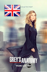 Greys Anatomy Temporada 17 subtitulos en ingles