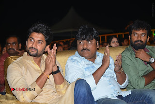 Nenu Local Audio Launch Stills  0240.JPG