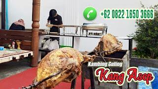 Kambing Guling Bandung Pastinya Enak, kambing guling bandung, kambing guling,
