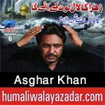 http://www.humaliwalayazadar.com/2013/06/asghar-khan-nohay-2010-2013.html