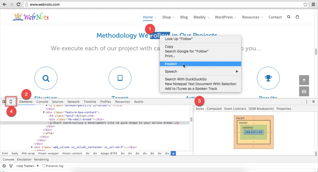Viewing Source Code with Developer Tools