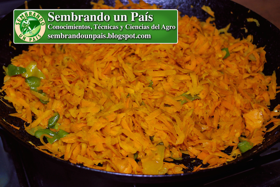 zanahorias en sartén