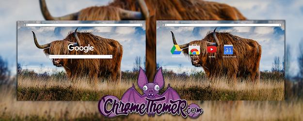 Bull Google Theme  | Chrome Web Store
