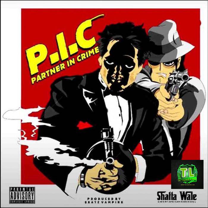 Shatta-Wale-Partner-In-Crime-PIC-mp3-download-Teelamford