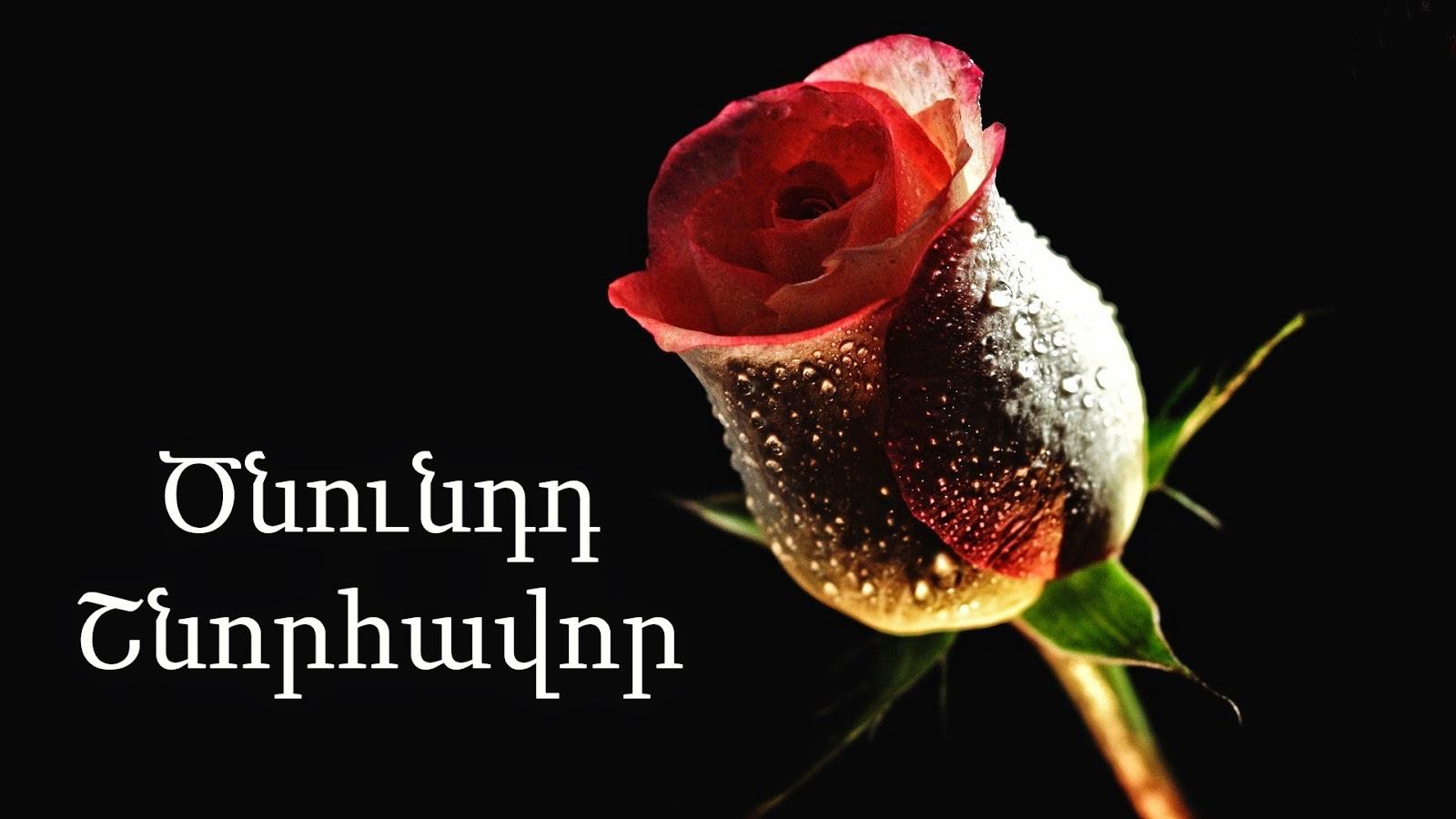 Открытки цнундт шноравор на армянском, днем рождения