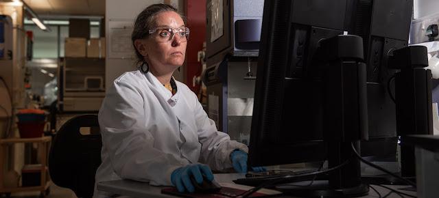 En el Instituto Jenner de la Universidad de Oxford continúa la investigación sobre el desarrollo de una vacuna contra el coronavirus.Universidad de Oxford/John Cairns
