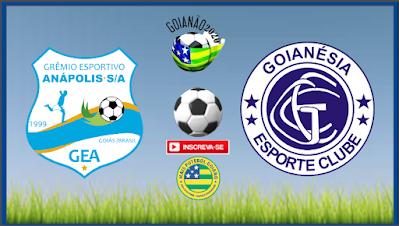 Goianésia quer voltar vencendo no retorno do Goianão, jogo será contra o Grêmio Anápolis