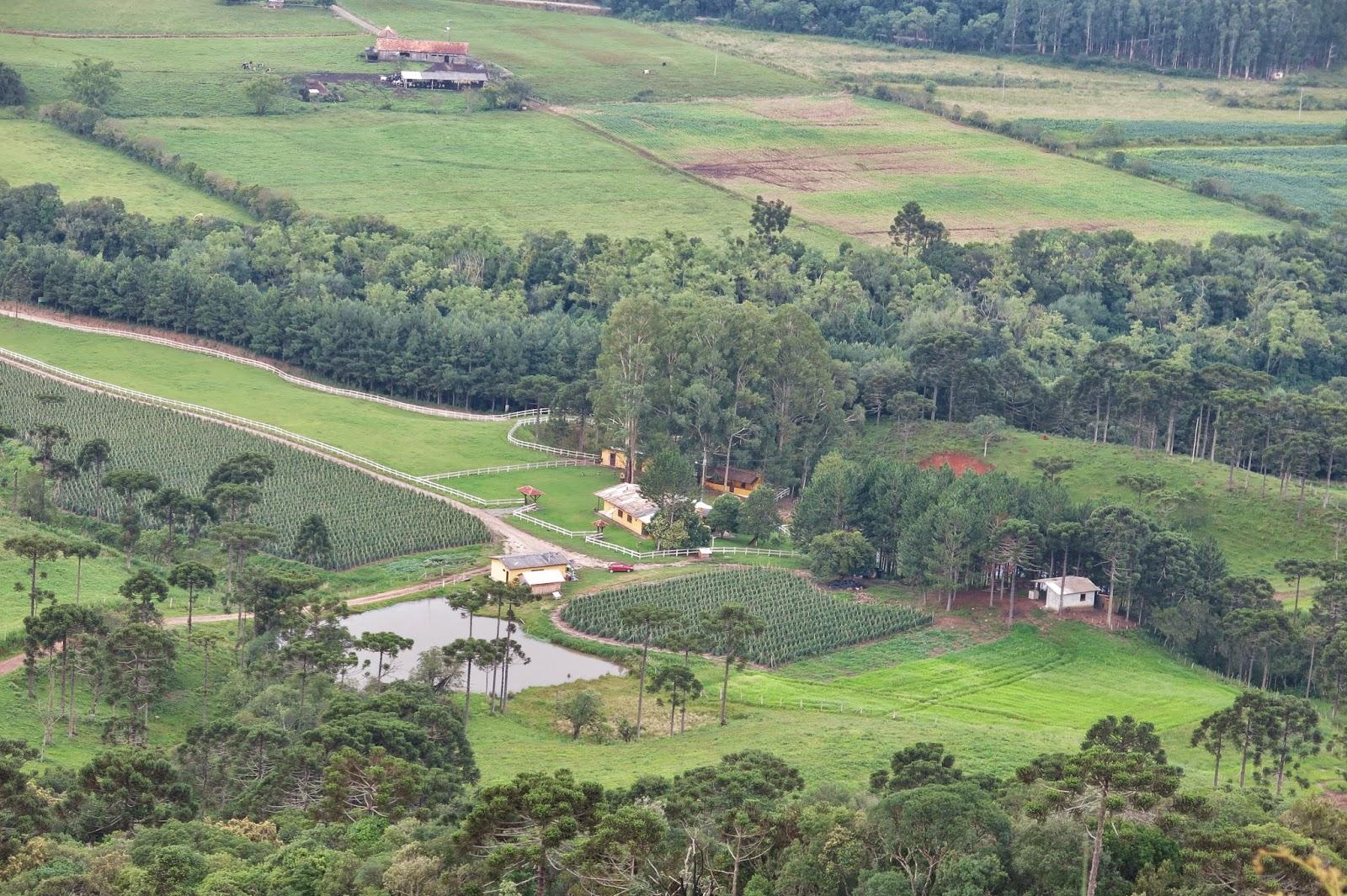 Plantações no Vale do Rio Canoas, em Urubici