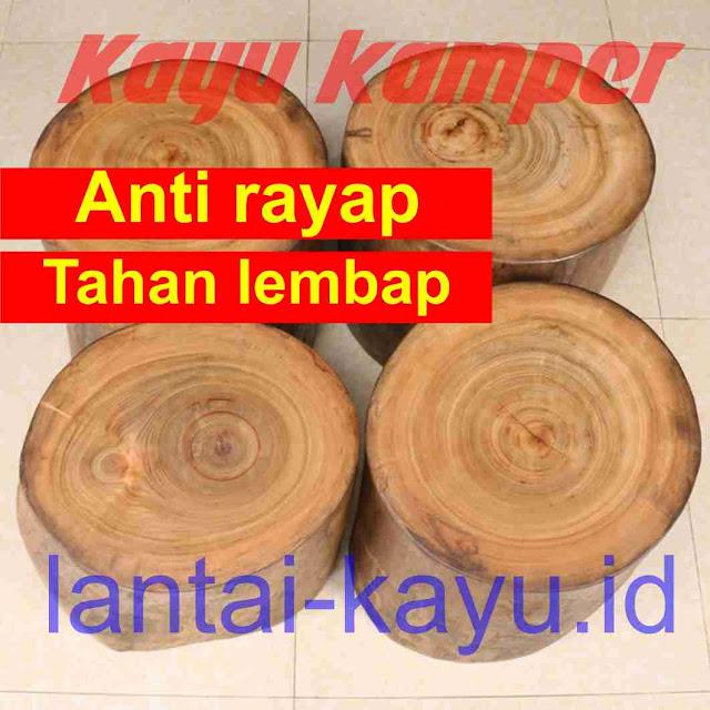 kayu kamper kuat dan tahan rayap