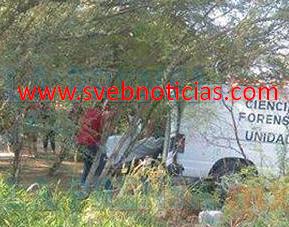 Hallan cuerpo amordazado y degollado en Reynosa Tamaulipas