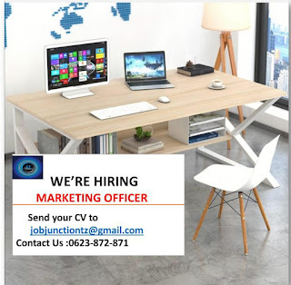 Job Opportunity at Job Junction, Marketing And Sales Officer