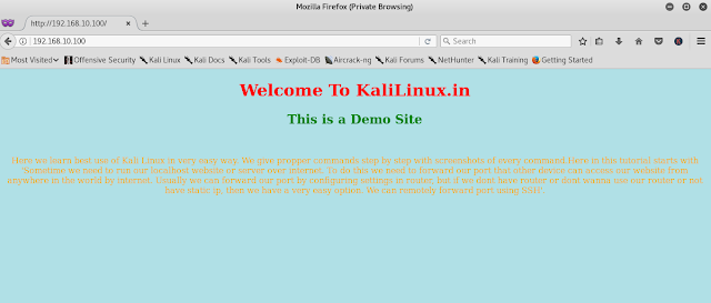 demo localhost website