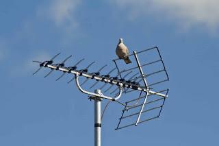 Cara Menonton Siaran TV Digital Dengan Antena UHF