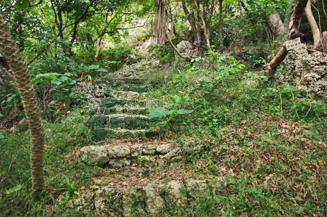 stone stairs leading through forest to a castle atop a hill