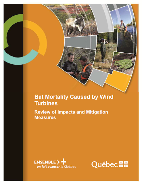 https://mffp.gouv.qc.ca/our-publications/bat-mortality-caused-by-wind-turbines/?lang=en