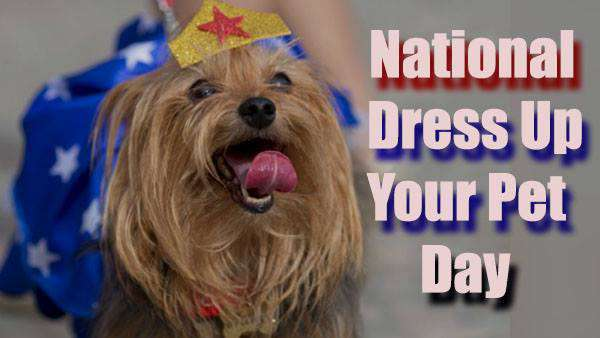 National Dress Up Your Pet Day Wishes For Facebook