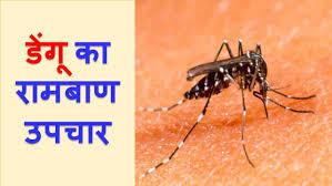 जानलेवा बीमारी डेंगू के कारण,लक्षण,और सफल इलाज-Dengue killer disease, symptoms, and treatment success