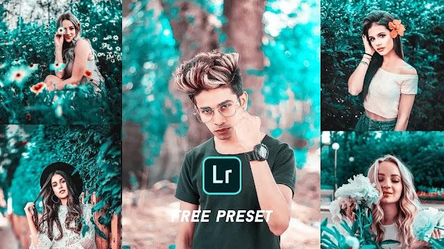 Teal and rose beige lightroom mobile preset free download