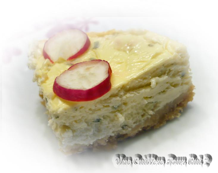 Cheese Cake Industriel