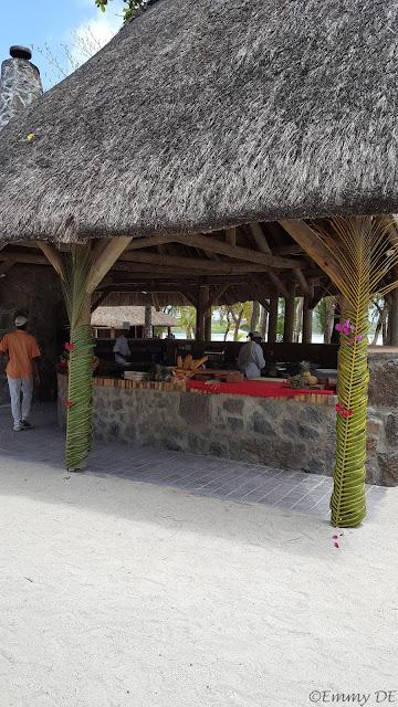 Island Île aux Cerfs ~ Mauritius by ©Emmy DE