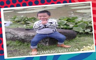 Travel Tanjung Duren Ke Pringsewu Lampung