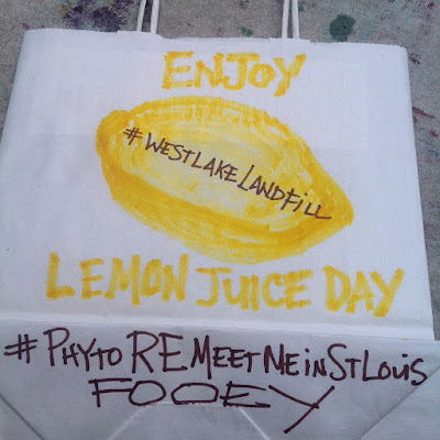 #PhytoReMeetMeInStLouis Action Solution for Westlake Landfill
