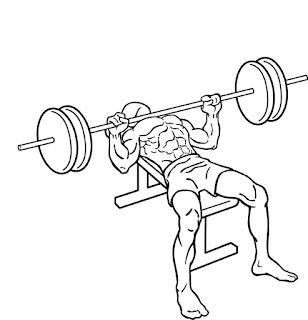 大胸筋の筋トレメニュー|上部・内側・下部それぞれの鍛え方│【公式】公益社団法人 日本パワーリフティング協会