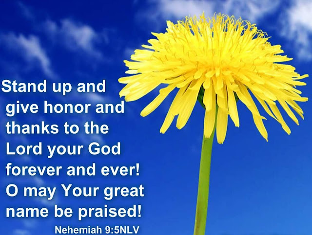 Blessed be your glorious name, and may it be exalted above all blessing and praise.