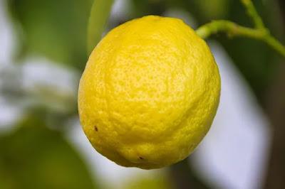 lemon in water benefits(पानी में नींबू के लाभ)