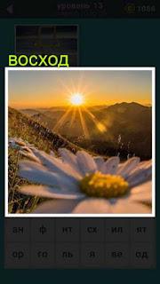 среди гор появилось солнце, лучами касаясь холмов 667 слов 13 уровень